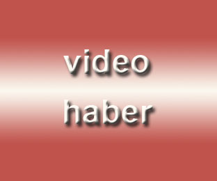 Yolda can pazarı - Video Haber